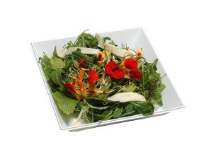 White PS plastic Wan salad bowl